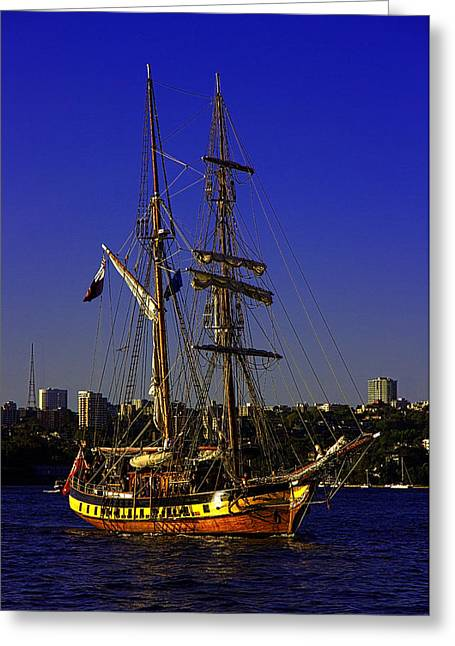 Tall Ships Greeting Cards - Windeward Bound Sailing Sydney Harbour Greeting Card by Miroslava Jurcik
