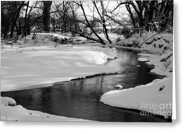Winding River Greeting Card by Julie Lueders