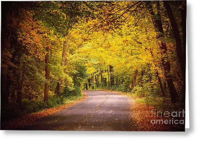 Warm Tones Greeting Cards - Winding Roads and Fall Foliage Greeting Card by Katya Horner