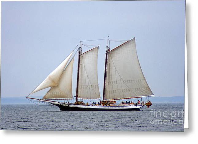 Historic Schooner Greeting Cards - Windjammer Grace Bailey Greeting Card by Jim Beckwith