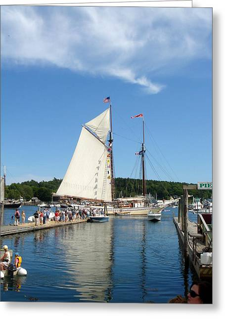 Boothbay Harbor Greeting Cards - Windjammer Reflection Greeting Card by Erica Rickards