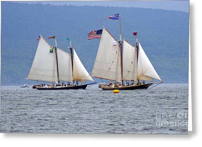 Historic Schooner Greeting Cards - Windjammers Greeting Card by Jim Beckwith