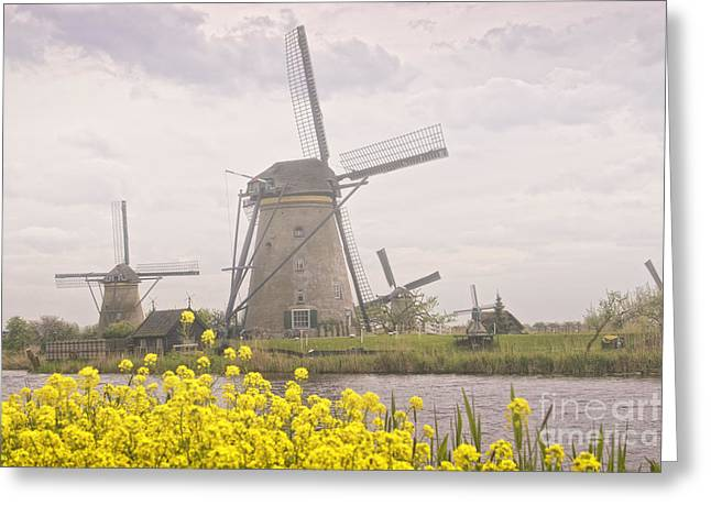 Haze Greeting Cards - Windmills Greeting Card by Timothy Hacker