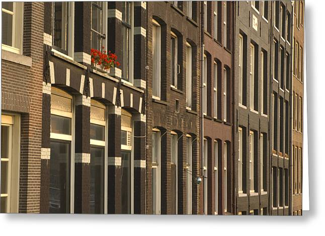 Netherlands Greeting Cards - Window Box Greeting Card by Andy Smy