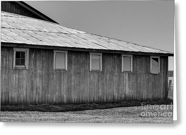 Old Barns Greeting Cards - Window Dressing Greeting Card by Alan Look