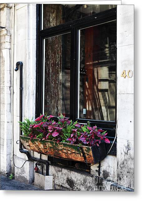Quebec Province Greeting Cards - Window Flowers Greeting Card by John Rizzuto