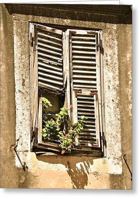 Wooden Shutters Greeting Cards - Window in Dubrovnik Greeting Card by Alberta Brown Buller