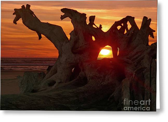 Emergence Greeting Cards - Window Of Light Greeting Card by Crystal Garner