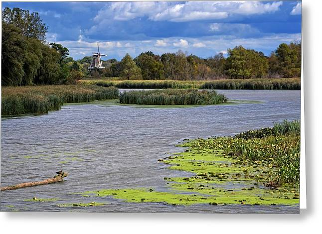 Michelle Greeting Cards - Window on the Waterfront with Ducks Greeting Card by Michelle Calkins