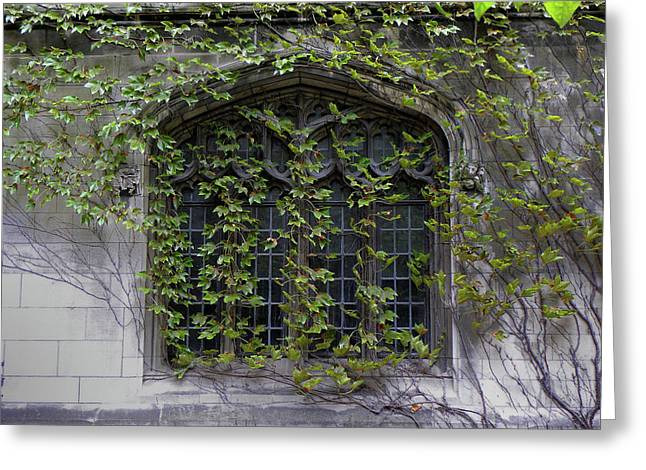 Pritzker School Of Medicine Greeting Cards - Window Scene University of Chicago 2009 Greeting Card by Joseph Duba