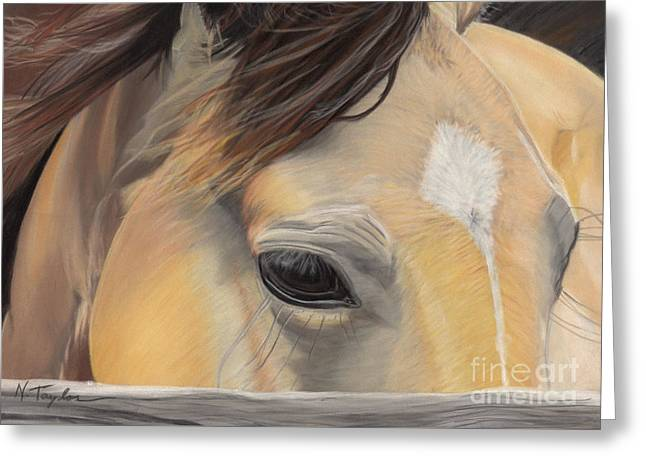Ranch Pastels Greeting Cards - Window to the Soul Greeting Card by Nichole Taylor