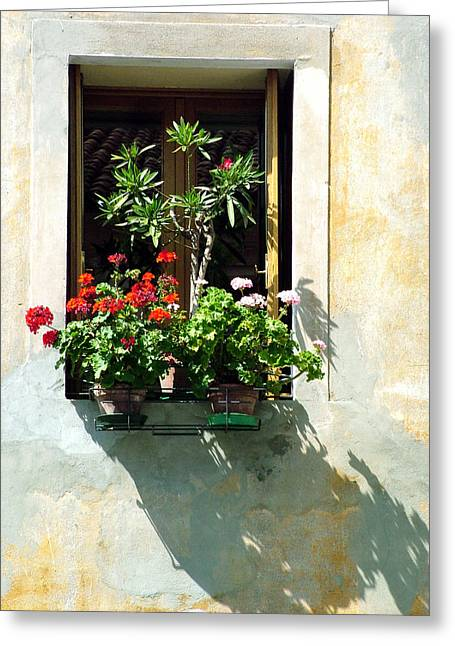 Window With A Tree Greeting Card by Donna Corless