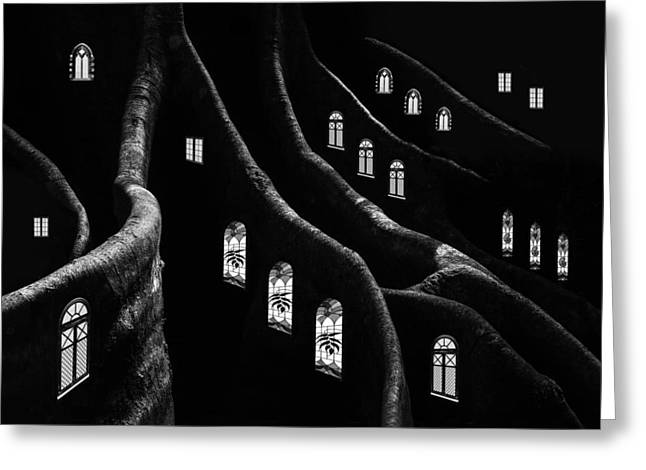 Nocturnal Greeting Cards - Windows Of The Forest Greeting Card by Jacqueline Hammer