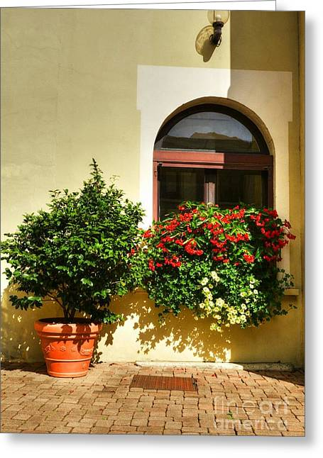 Southern France Greeting Cards - Windows Of Vienne 2 Greeting Card by Mel Steinhauer