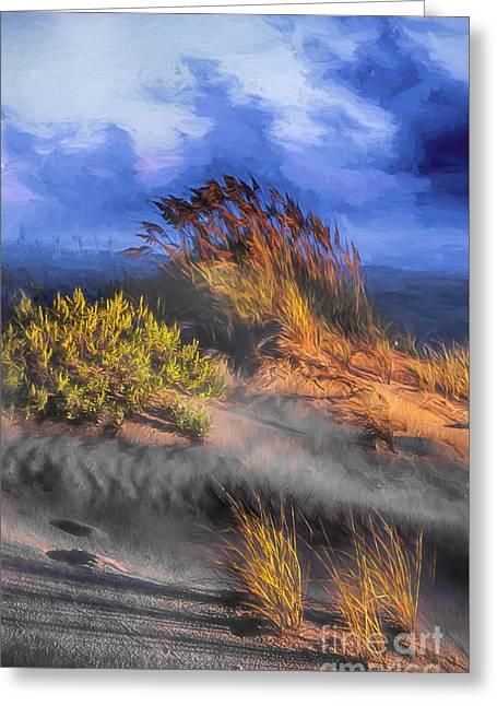 Ocean Photos Paintings Greeting Cards - Windswept Greeting Card by Dan Carmichael