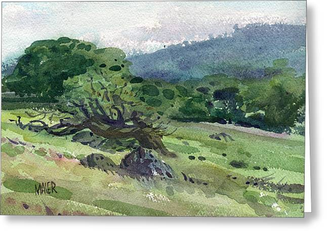 Windswept Paintings Greeting Cards - Windswept Greeting Card by Donald Maier