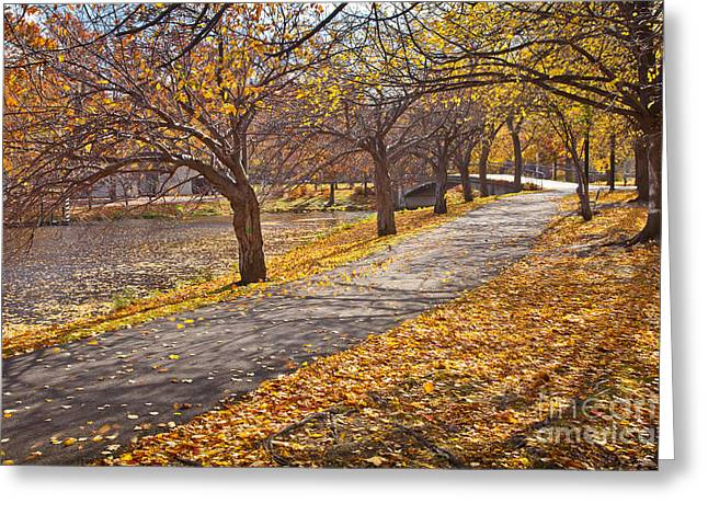 Charles River Greeting Cards - Windswept Walk Greeting Card by Susan Cole Kelly