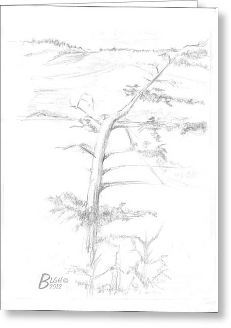 Windy Drawings Greeting Cards - Windy Day Greeting Card by Blg H
