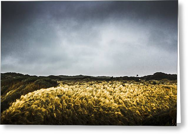 Windy Willow Greeting Card by Jorgo Photography - Wall Art Gallery