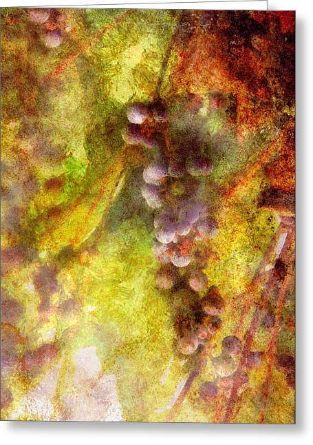 Purple Grapes Greeting Cards - Wine - Grapes Greeting Card by Mike Savad