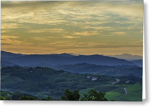 Grape Vineyard Greeting Cards - Wine country of Slovenia Greeting Card by Alexandra Latypova