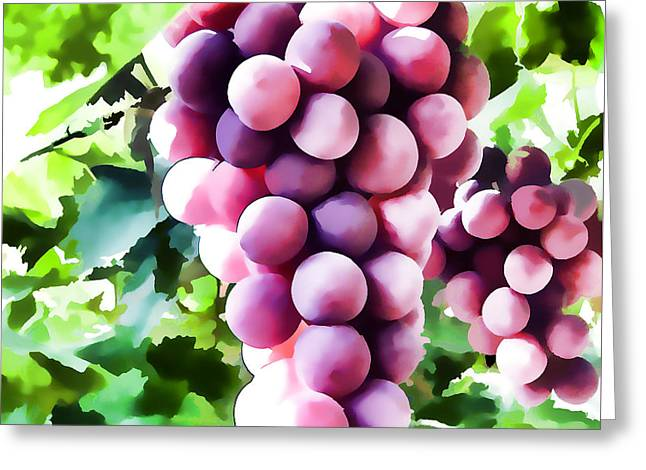 Wine Grapes On The Vine Greeting Card by Lanjee Chee