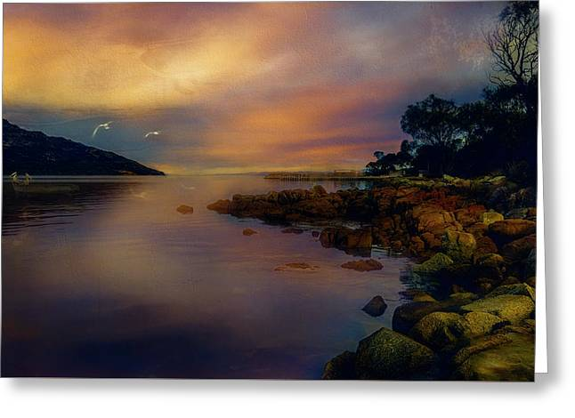 Wineglass Bay At Dusk Greeting Card by Rosemary Smith