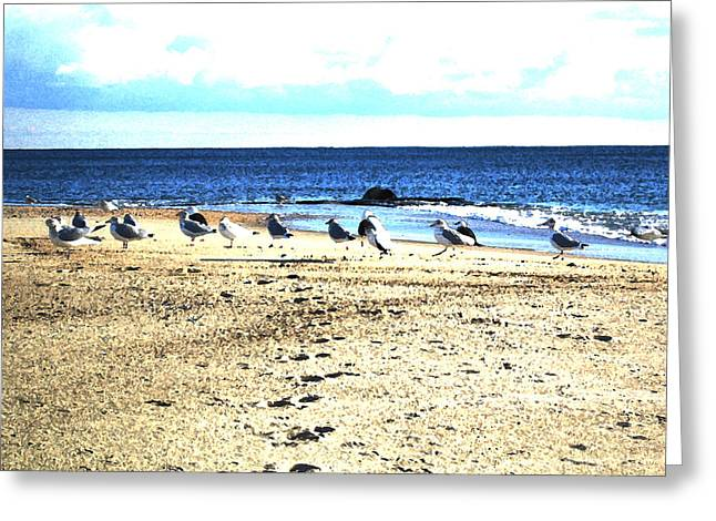 Ocean Shore Mixed Media Greeting Cards - Wingin It Greeting Card by Paul Barlo