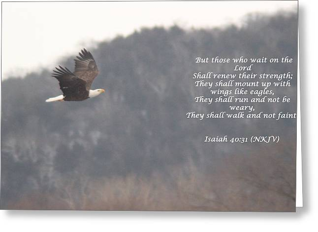 Wings Greeting Card by Cliff Ball