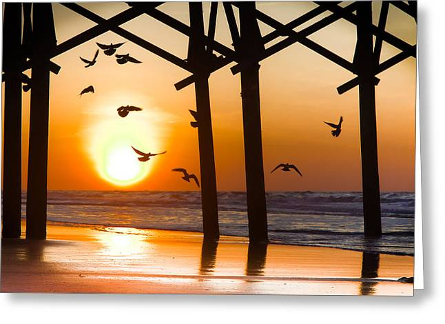 City Pier Greeting Cards - WINGS of FREEDOM Greeting Card by Karen Wiles