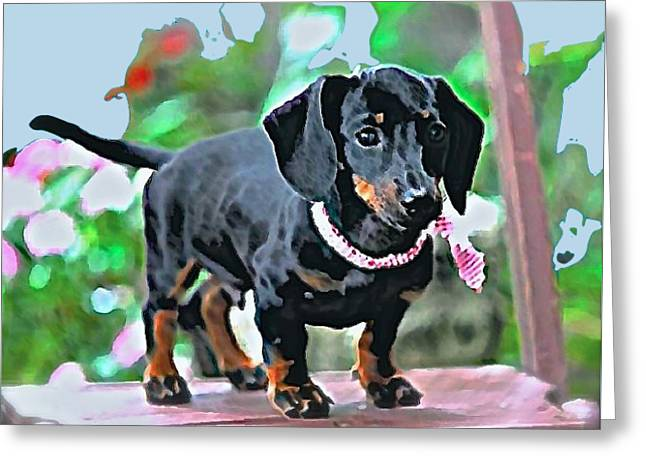 Pet Tapestries - Textiles Greeting Cards - Winston Greeting Card by Funk Art