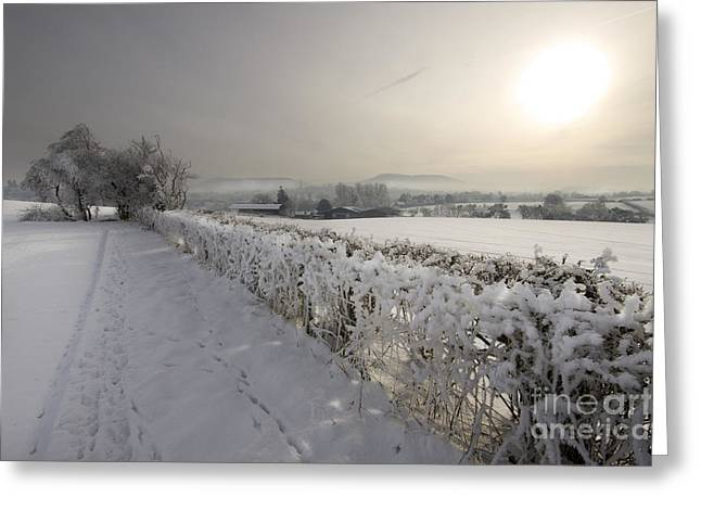 Foggy Day Greeting Cards - Winter Greeting Card by Angel  Tarantella