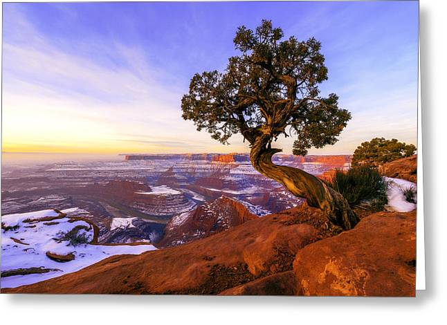American West Greeting Cards - Winter at Dead Horse Greeting Card by Chad Dutson