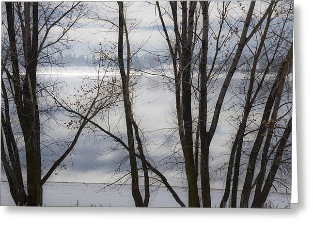 Gloomy Winter Greeting Cards - Winter at the Lake Greeting Card by Utah Images