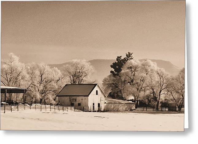 Barn Covered In Snow Greeting Cards - Winter Barn -Sepia Greeting Card by Denise Jenks