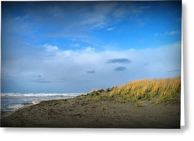 Winter Beach Greeting Card by Mg Rhoades
