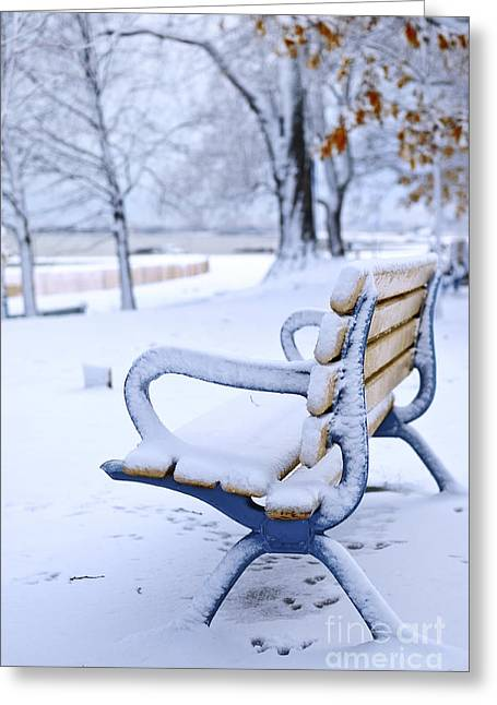 Park Benches Photographs Greeting Cards - Winter bench Greeting Card by Elena Elisseeva