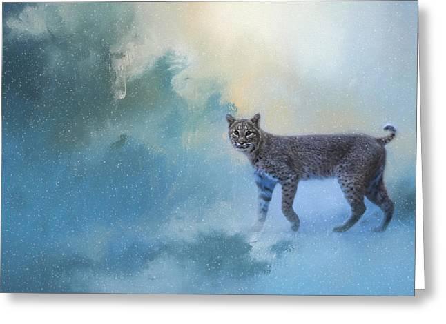 Winter Bobcat Greeting Card by Jai Johnson