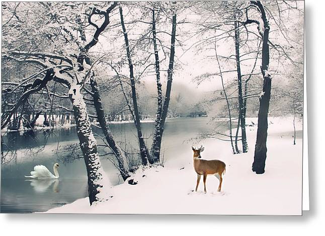 Winter Calls Greeting Card by Jessica Jenney