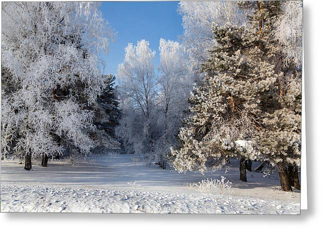 Snow Scene Landscape Greeting Cards - Winter Charm Greeting Card by Victor Kovchin