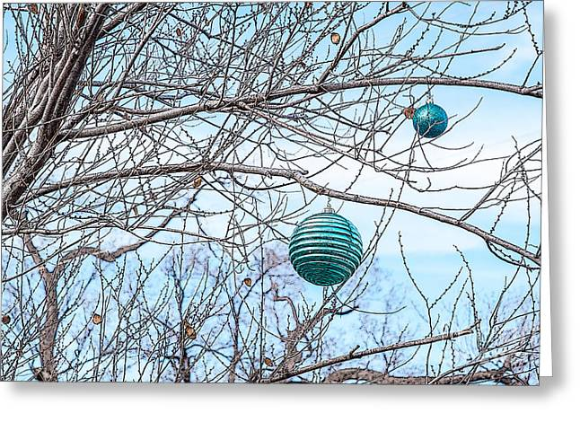 Special Occasion Greeting Cards - Winter Cheer Greeting Card by Roselynne Broussard