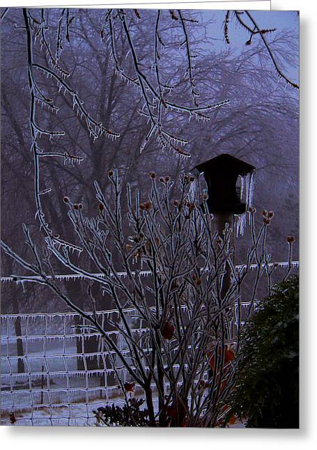 Dmc Greeting Cards - Winter Chill Greeting Card by Kevin Lormand