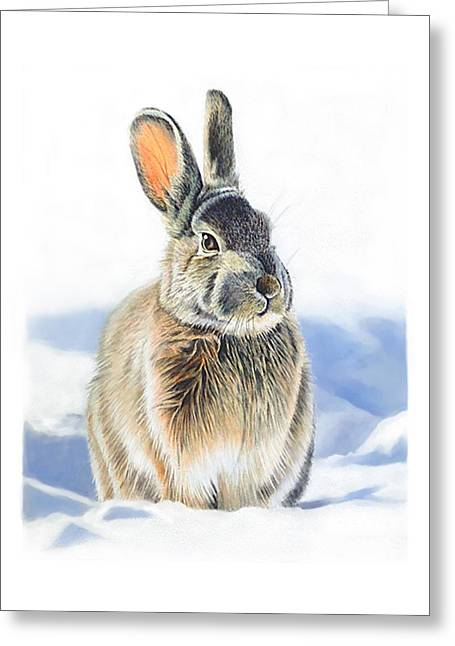 Winter Coat Greeting Card by Bob Nolin