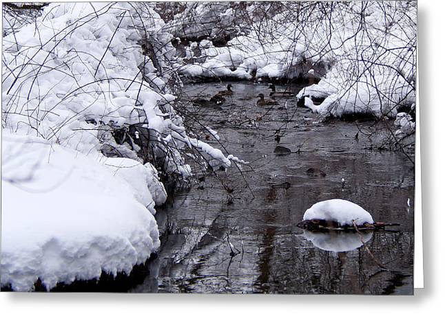 Rill Greeting Cards - Winter Convergence Greeting Card by Scott  Wyatt
