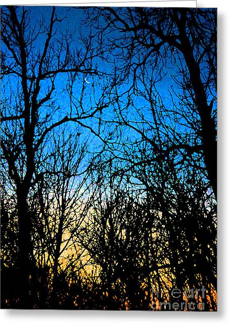 Winter Crescent Moon Painted Greeting Card by Karen Adams