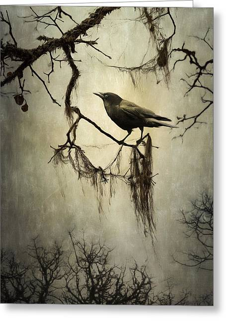 Gnarly Greeting Cards - Winter Crow Greeting Card by Colleen Farrell
