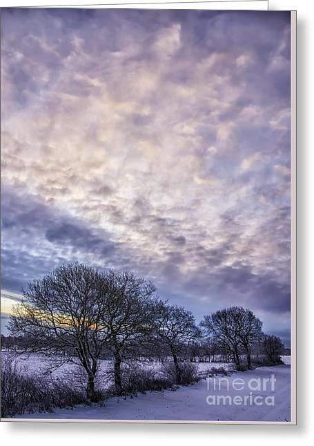 Snow Scene Landscape Greeting Cards - Winter Dawn Greeting Card by Antony McAulay