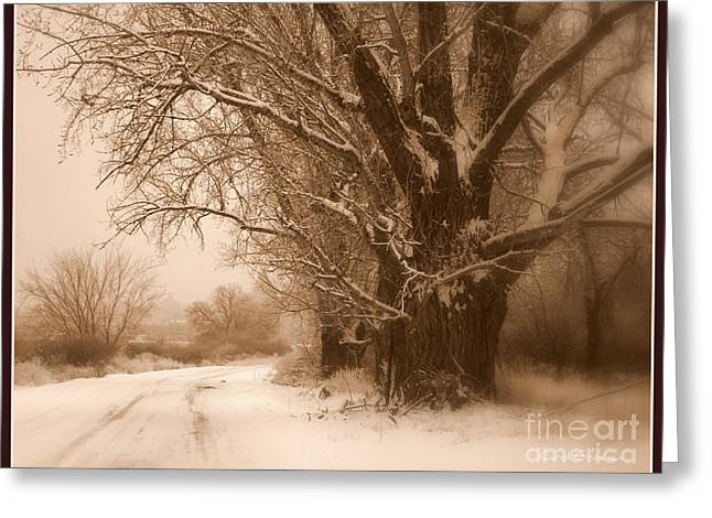 Winter Roads Greeting Cards - Winter Dream with Framing Greeting Card by Carol Groenen