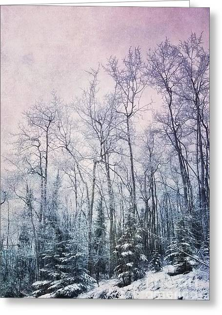 Outdoor Portrait Greeting Cards - Winter Forest Greeting Card by Priska Wettstein