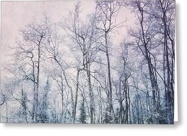 winter forest Greeting Card by Priska Wettstein